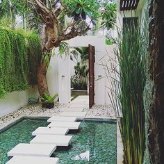 """This year brings many new exciting adventures, including """"Splice Travels.first up Bali ladies! Garden Pool, Backyard Patio, Landscape Design, Garden Design, Boutiques Australia, Balinese Garden, Modern Small House Design, Bali House, Patio Interior"""