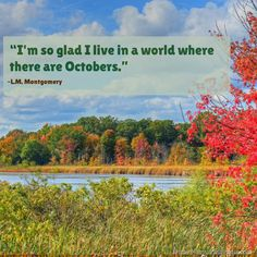 """Quotes about autumn and fall: """"I'm so glad I live in a world where there are Octobers. S Quote, Hello Autumn, Fibromyalgia, Great Quotes, Picture Quotes, Most Beautiful Pictures, Quotations, Things To Do, October"""