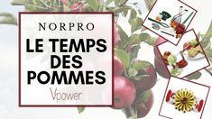 Alliés Norpro pour le temps des pommes Un nouvel article est disponible sur le blogue. Découvrez tous les essentiels Norpro pour cuisiner pendant la saison des pommes. Presentation, Blog, Budget, Steamer, Weck Jars, Strawberry Juice, Recycled Glass, Home Made, Cooking Food