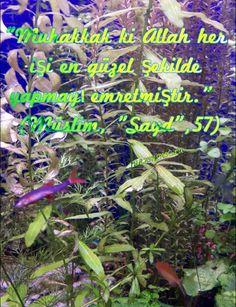 """""""Muhakkak ki Allah her işi en güzel şekilde yapmayı emretmiştir.""""    (Müslim, """"Sayd"""",57)"""