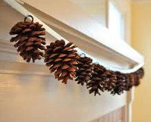 Virginia PINE CONES Set of 6 Huge Extra Large for Crafts Wreaths Fresh Eggs Daily