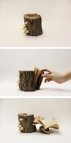 If it looks like a stump of wood... it might not be a stump of wood—it could be a book!