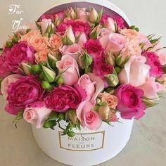 Sweet Bastard – World of Flowers Beautiful Flower Arrangements, Pretty Flowers, Fresh Flowers, Pink Flowers, Floral Arrangements, Birthday Flower Arrangements, Pink Roses, Flower Box Gift, Flower Boxes