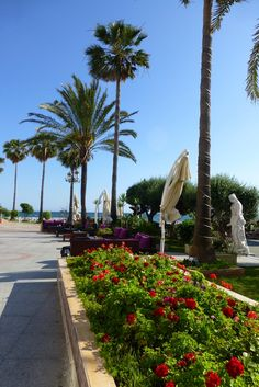 Puerto Banus, 2013 Stuff To Do, Things To Do, Nerja, Puerto Banus, Spain, Sidewalk, Live, Places, Sun
