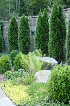 structure and softness- planting designed while working at Cascade Design Group as lead designer