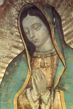 """Nuestra Señora de Guadalupe """"Ahí en el dolor en el fragor de mis batallas, tu manto me envuelve a CRISTO me lleva Ahí en las pruebas el cielo se abre, tu voz me dice no tengas miedo """"¿No estoy yo AQUÍ que soy tu MADRE?"""""""""""
