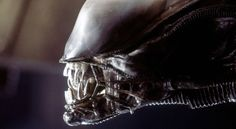 """Ridley Scott says Prometheus sequel Alien: Paradise Lost will """"back into"""" first film, and reveal who created the Aliens themselves."""