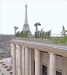potager sur les toits de paris - Recherche Google