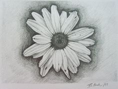 Great daisy - but petals evened out for my tattoo