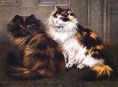 Você já deve ter ouvido falar que todos os gatos tricolores (preto, laranja e branco) ou escaminhas (preto e laranja) são fêmeas, certo? Mas…