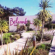 Comparateur de voyages http://www.hotels-live.com : Soleil  24 degrés le Club @belambralescriques n'attend plus que vous ! J-2 avant l'ouverture  #Repost @milana.photographie #Belambra #LesCriques #Hyères #presquiledegiens #France Hotels-live.com via https://www.instagram.com/p/BD57v5Ioxyk/ #Flickr via Hotels-live.com https://www.facebook.com/125048940862168/photos/a.943309285702792.1073741874.125048940862168/1142739855759733/?type=3 #Tumblr #Hotels-live.com