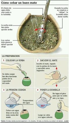 """Organic Yerba mate tea has many health benefits. Learn about what it is and how to consume it. In South America, it is referred as """"The Drink of the Gods. Love Mate, Argentina Food, Argentina Recipes, Argentina Culture, Yerba Mate Tea, Thinking Day, Spanish Food, Good To Know, Tea Time"""
