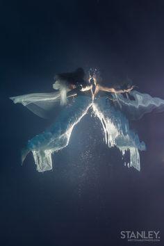 Underwater Photography © Brett Stanley