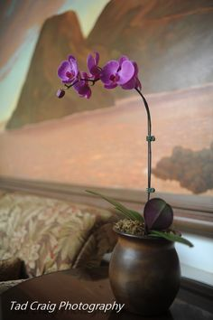 Little orchid details at the entance lobby of the Hotel @Darla Runge Kea Lani