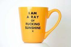 I am a ray of fucking sunshine... ceramic coffee mug-Home & Garden-Meriwether of Montana