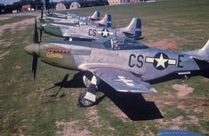 Various shades of green on the noses of these P-51D Mustangs of the 359th Fighter Group's 370th Fighter Squadron. Source: Roger Freeman Collection