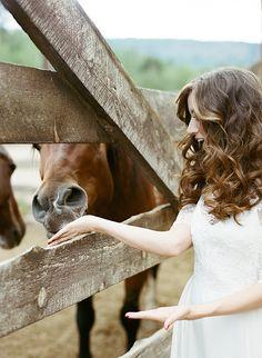 Bride Feeding Horses at a Ranch Wedding