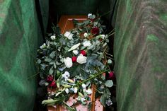 Funeral Photography, Cc Images, Plants, Plant, Planets