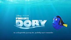Finally! Finding Dor