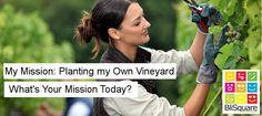 My Mission: Planting My Own Vineyard