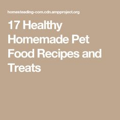 17 Healthy Homemade Pet Food Recipes and Treats