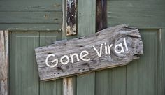 11 Methods That Will Make Your Content Marketing Campaign Go Viral