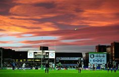 Montpellier-Leicester Tigers