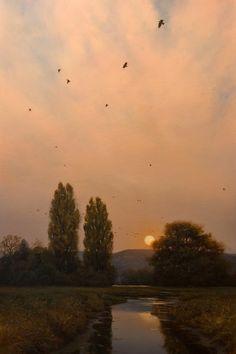 Evening Migration, by Renato Muccillo