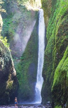 Oneonta Waterfall in Columbia River Gorge, Oregon. Such a beauty!