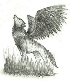 pictures of winged animals wolves and cats | Sketch Winged Wolf by wolfylittleartist