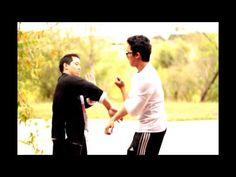 Wing Chun Kung Fu Marshal Arts, Hand To Hand Combat, Lineage, Wing Chun, Aikido, Krav Maga, Bruce Lee, Self Defense, Kung Fu