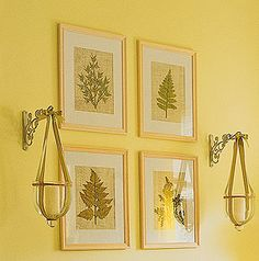 On a background of burlap fabric, display pressed botanicals in inexpensive discount-store frames. For color, include a few pressed flowers, either dried by you or purchased from an arts and crafts store.