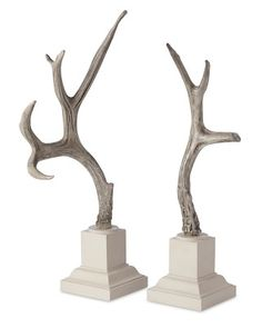 These are cool and you don't have to go hunting!  Weathered Antler Objects #WilliamsSonoma