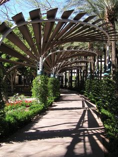 Shot of the walkway in downtown Phoenix at the Arizona Center