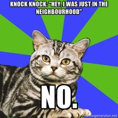 """Introvert Cat: Knock knock: """"Hey, I was just in the neighborhood...""""  NO."""