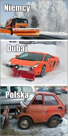 Funny Funny Lyrics, Poland History, Lol, Zootopia, Car Humor, Wtf Funny, Best Memes, Funny Pictures, Geek Stuff