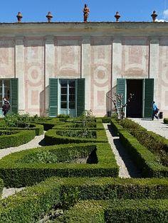 ALECIA STEVENS: limonia in Boboli Garden at the Pitti Palace