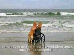 Si no sabes que es el puro y verdadero amor aquí tienes un ejemplo. Síguenos en Facebook: www.facebook.com/valoresparatodalavida