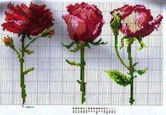 [rosas.jpg]
