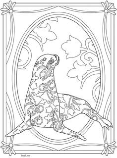 Creative Haven Sealife Sea Lion--Welcome to Dover Publications