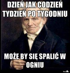 Schopenhauer vol. n-ty Sad Pictures, Best Funny Pictures, Funny Images, Reaction Pictures, Wtf Funny, Hilarious, Best Of 9gag, Funny Mems, Depression Memes
