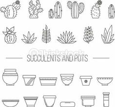 Set of succulent plants, cactuses and pots.- Set of succulent plants, cactuses and pots. Linear botanical vector… Set of fresh plants and cactus and cookware. Succulents Drawing, Cactus Drawing, Plant Drawing, Planting Succulents, Succulents Art, Succulents Wallpaper, Propagating Succulents, Doodle Drawings, Doodle Art