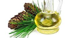 L'olio essenziale di Pino si estrae dagli aghi e dai rametti e viene utilizzato per diversi preparati ad uso terapeutico con effetto balsamico. Svolge, infatti, un'azione tonificante, espettorante e antisettica, oltre che balsamica, utile per alleviare diversi disturbi respiratori.