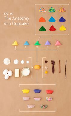 The Anatomy of A Cupcake by Sarah Wilson