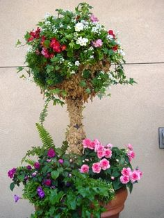 Fun Topiary idea Topiary Decor, Topiary Trees, Flower Containers, Yard Ideas, Container Gardening, Front Porch, Favorite Things, Floral Wreath, Arts And Crafts