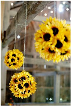 sunflower balls, love the pops of color and would go great with purples n greens. Maybe hang from the gazebo?