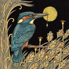 Gorgeous artwork of King Fisher by Anita Inverarity