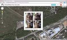 I Know Where Your Cat Lives - I Know Where Your Cat Lives is a data experiment that visualizes a sample of 1 million public pics of cats on a world map, locating them by the latitude and longitude coordinates embedded in their metadata. The cats were accessed via publicly available APIs provided by popular photo sharing websites. The photos were then run through various clustering algorithms using a supercomputer at Florida State University in order to represent the enormity of the data…
