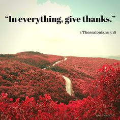 """In everything, give thanks."" ~ 1 Thessalonians 5:18"