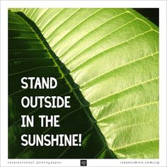 Stand outside - Inspirational Quotograph by Israel Smith. #inspiration #quotes  http://israelsmith.com/iq/stand-outside/